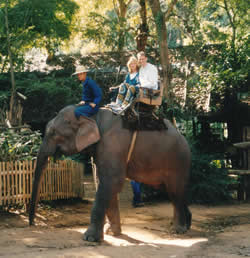 Chiang Mai, Elephant Camp